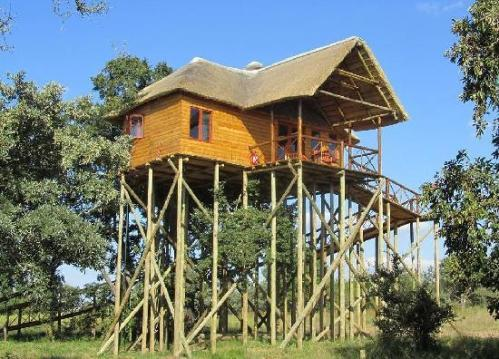 pezulu-tree-house-mountain Hoedspruit, Afrika Selatan
